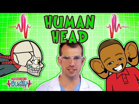 Science for kids | Body Parts - THE HUMAN HEAD | Operation Ouch | Experiments for kids