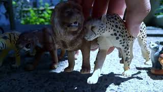 #Paws by Claws ep.18 # tiger #volf toys # kristina kashytska # dog # kids