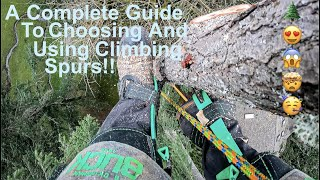 EVERYTHING You Need To Know About Tree Climbing Spurs! A Complete Guide to Choosing and Using Spurs!