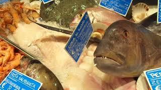 Il pesce di Fico! La Nave errante Bistrot di Feudi di San Gregorio