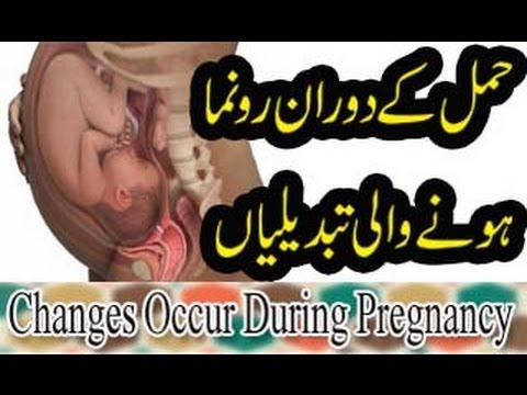 Hamal K Doran Hone Wali Tabdili | حمل کے دوران ہونے والی تبدیلیاں | Changes Occur During Pregnancy