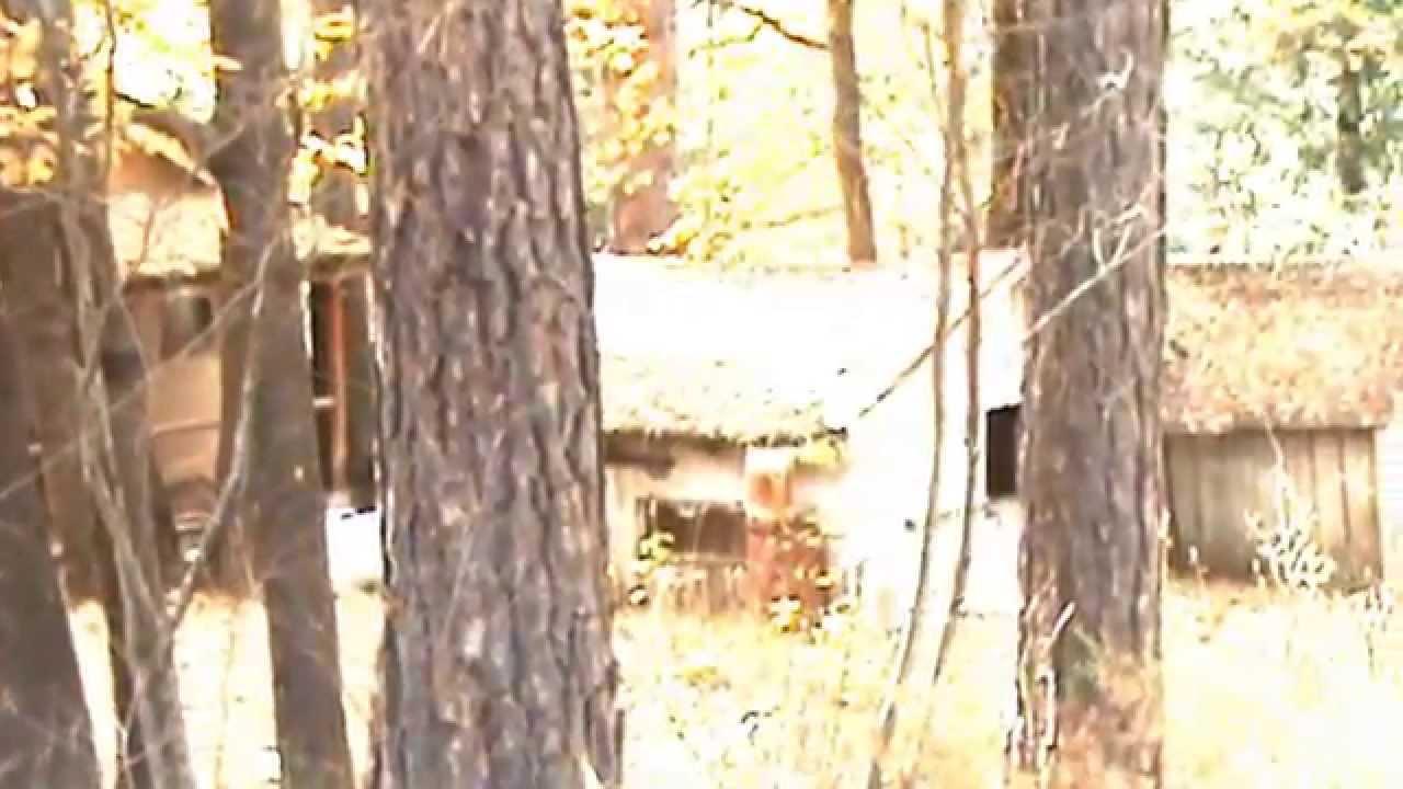 keddie murders cabin 28 found footage 2009 at keddie ca youtube