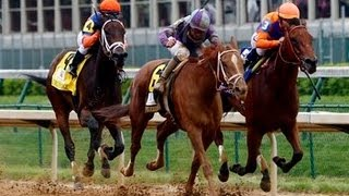 2013 Kentucky Oaks - Princess Of Sylmar + Post Race