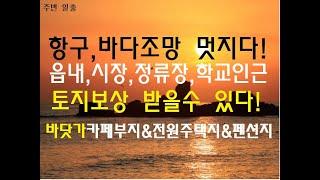 [번호 386892] 강원 삼척시 원덕읍 바닷가 카페부…
