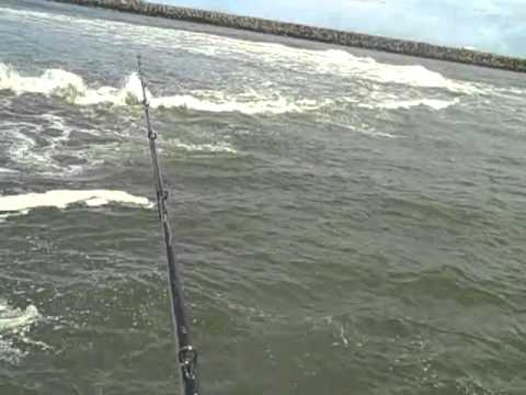 Full download surf fishing oregon coast for Seaside oregon fishing
