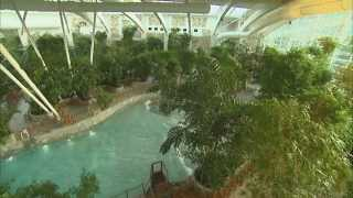 Raft and Water Slides at our Swimming Pool, The Subtropical Swimming Paradise