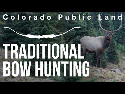 Traditional Bow Hunting Elk - Colorado Public Land