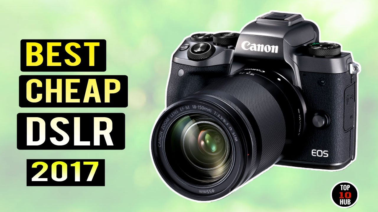 Best digital slr cameras for amateurs