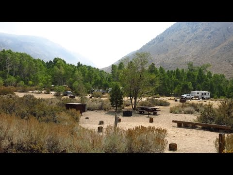 Four Jeffrey Campground Inyo National Forest on Bishop