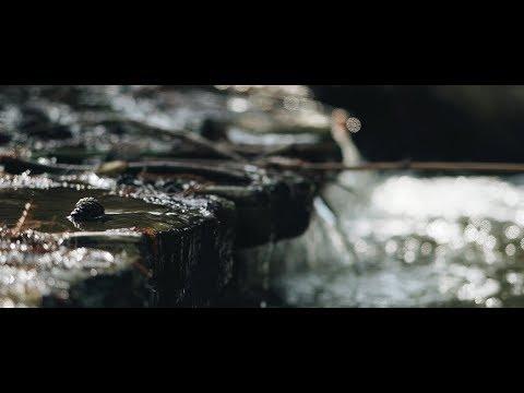 Averill Park - Sony A7 iii