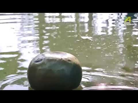 hot Podma Nodir Majhi  Video young teen roopa ganguly super hot scene transparent cloths thumbnail