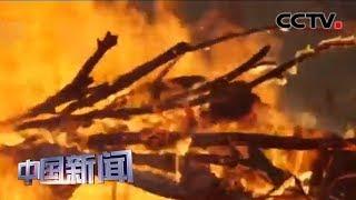 [中国新闻] 潮湿天气助阵 澳新州灭火工作转守为攻 | CCTV中文国际