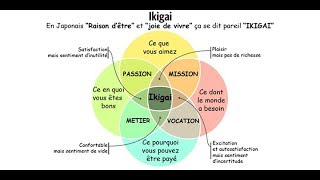 💖 Test d'orientation personnel (Ikigai) - N°375