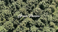 Greenpassion.ch -  CBD Cannabis made in Zürich - Switzerland