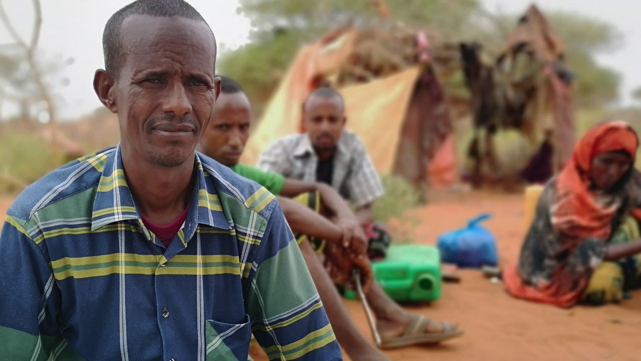 (ETHIOPIA - December 2019) The worst drought for 30 years: Internal displacement in Ethiopia (201