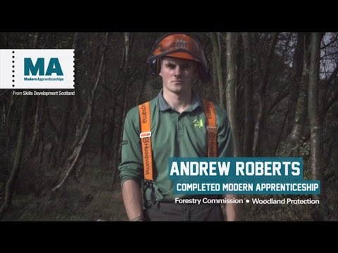 Forestry Commission Modern Apprenticeships, find out more