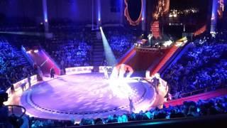 видео Как выбирают места в Цирке на Цветном бульваре