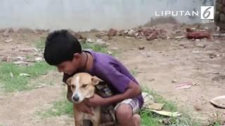 Gambar cover OOPS !!! Bocah 10 Tahun Kecanduan Menyusui ke Anjing