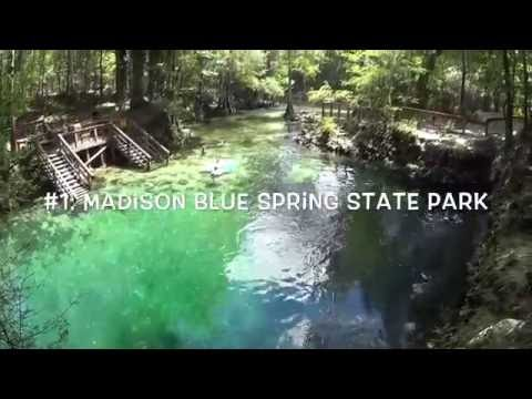 TOP 5: Florida State Park Springs!