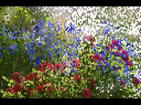 I 7 fiori pi belli del mondo youtube for I gioielli piu belli del mondo
