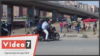 بالفيديو.. أول سوق لبيع الكلاب بكفر الشيخ.. سعر الكلب يبدأمن 500 جنيه لـ 50 ألف