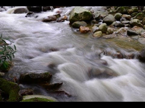 Sierra Nevada's River Sound