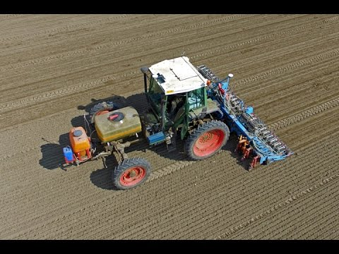 3 m wide Fendt F390GT drilling onions | CTF | Unique tool carrier tractor