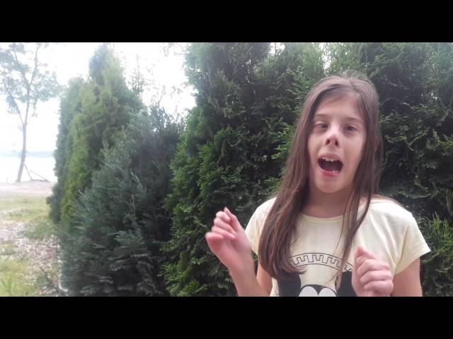 Vlog (Knic)
