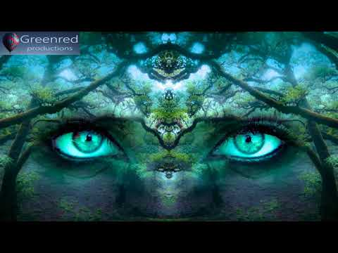 Happiness Meditation Music - Serotonin Release Music, Happiness Frequency, Binaural Beats Music