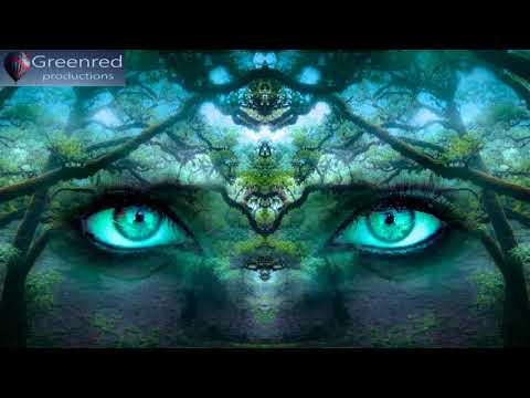 Happiness Meditation Music - Serotonin Release Music, Happiness Frequency, Binaural Beats Music