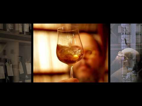 Ed Motta - Dondi (Official Video)