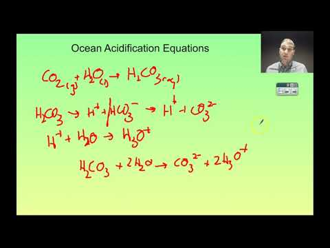 Flippin' Science-  Topic 1.1 Ocean Acidification