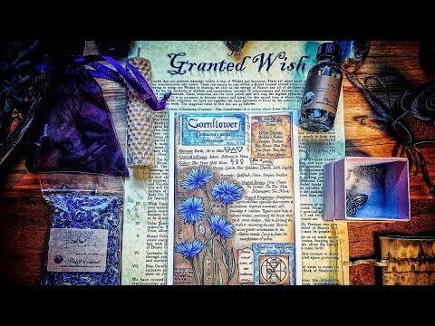 WITCHES ROOTS & PRO WITCH TIPS
