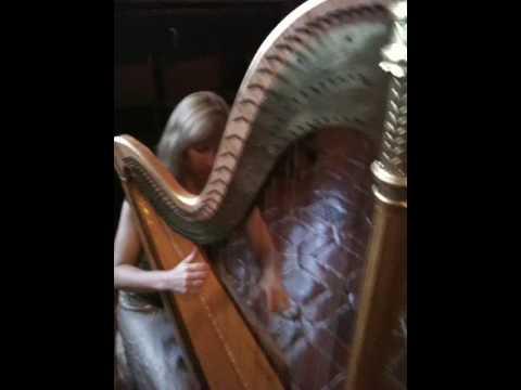 Mendelssohn Wedding March Harpist