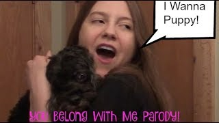 I Wanna Puppy| You Belong With Me| Taylor Swift