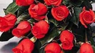 Richard Clayderman Lady in Red.wmv