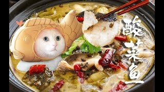 【酸菜鱼】堪称鱼的终极做法,没有比它更下饭的!