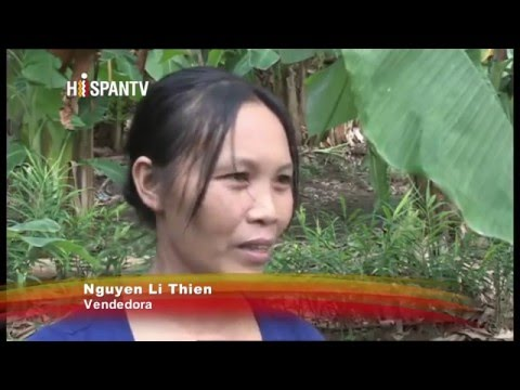 Los Niños del Agente Naranja: Monsanto 2,4D Vietnam (Completo HispanTV)