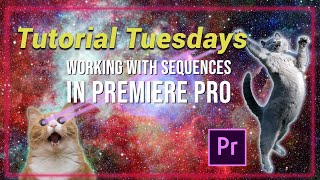 Working with Sequences in Premiere Pro - Tutorial Tuesdays Episode 5