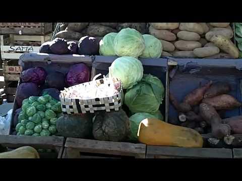 Farmers Market - Adrogue, Argentina (Part 3)