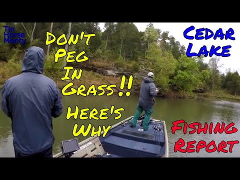 Should You PEG Your WEIGHT Cedar Lake Fishing Report April 26th 2020