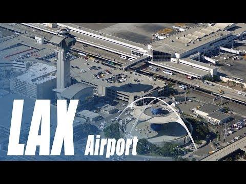 LAX Airport - a bird