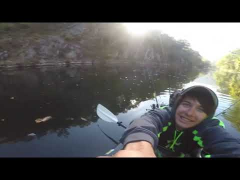 Pickerel Fishing In PA