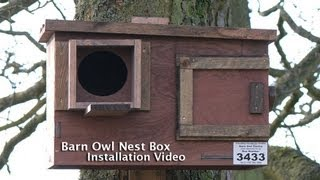 Barn Owl Nest Box Instruction Video 2013