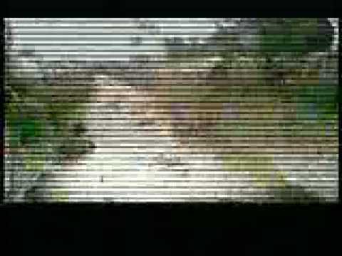 Vybz Kartel - last man standing (don't run) parody &refix