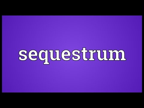 Header of sequestrum