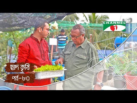 Rooftop farming | EPISODE 80 | HD | Shykh Seraj | Channel i | Roof Gardening | ছাদকৃষি |