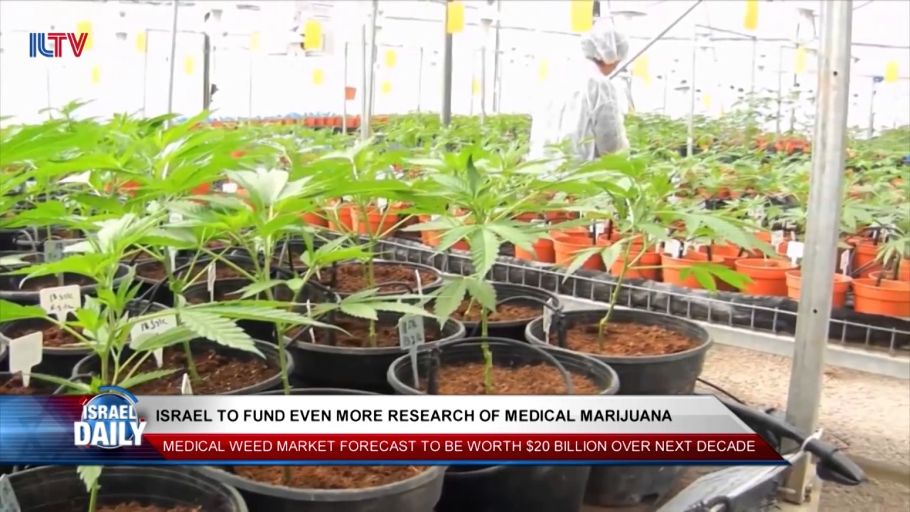 Israel to Fund Even More Medical Marijuana Research