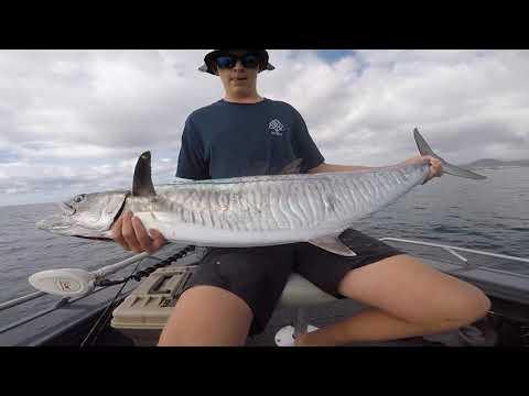 FISHING FOR SPANISH MACKEREL- Mid North Coast NSW