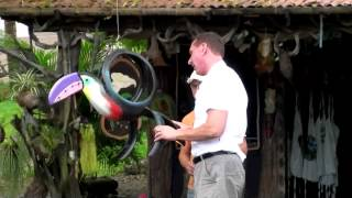 Video Tires Made into Beautiful Art in Costa Rica download MP3, 3GP, MP4, WEBM, AVI, FLV April 2018
